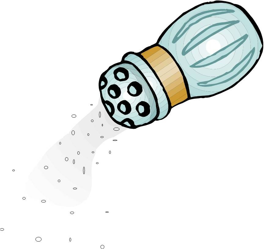 salt2-large